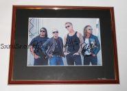 Автографы: Metallica. Д.Хэтфилд, Л.Ульрих, К.Хэмметт, Р.Трухильо. Редкость!